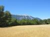 Der Mont Ventoux von Nordosten her