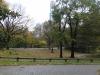 Sturmschäden im Park