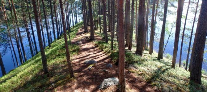 Wanderung im Petkeljärvi Nationalpark